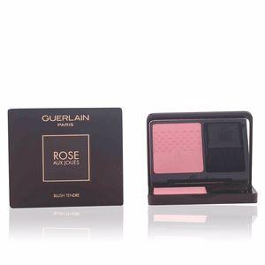 ROSE AUX JOUES duo de blush #01-morning rose 6,5 gr